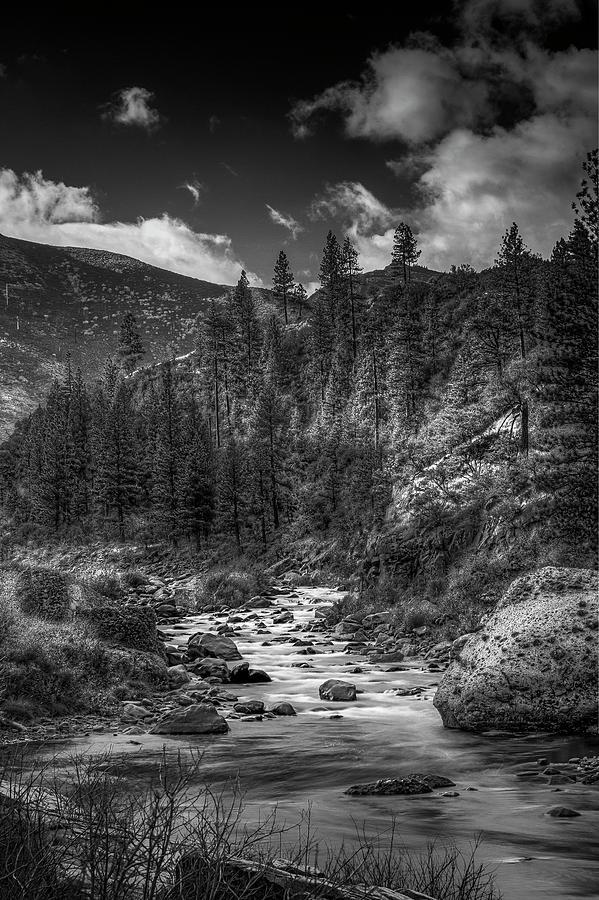 Calif/Nevada Stream by Bruce Bottomley