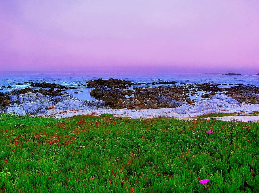 California Coast Photograph - California Coast by Jen White