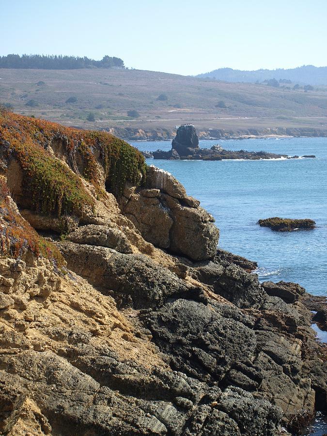 Beach Photograph - California Coast by Kristina Scott