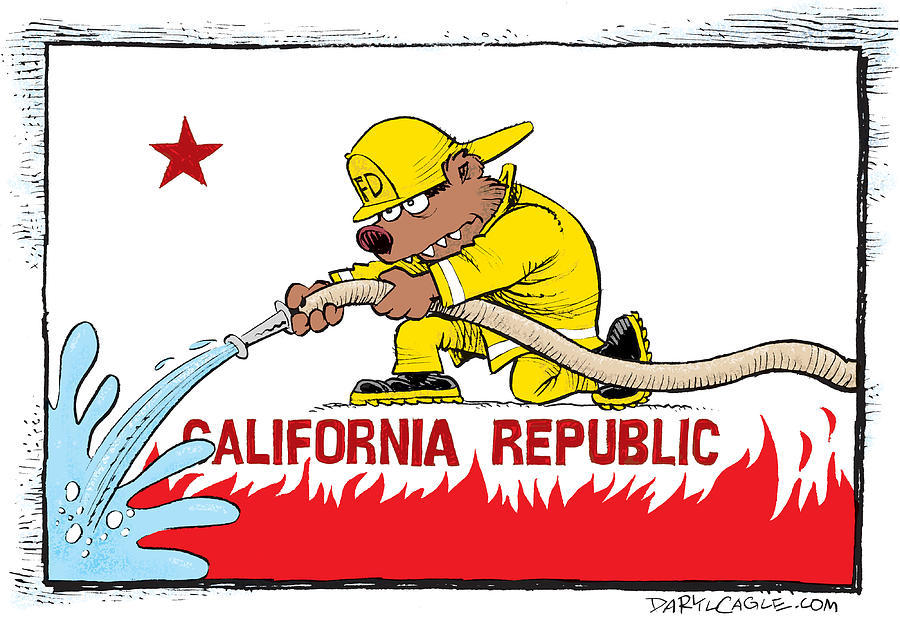 California Firefighter Flag Drawing By Daryl Cagle