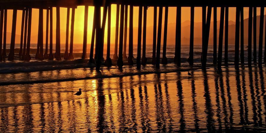 Nature Photograph - California Gold, Pismo Beach Pier, California by Flying Z Photography by Zayne Diamond