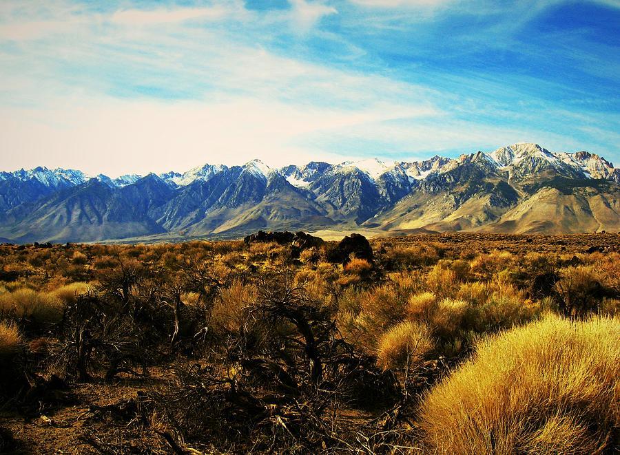 California High Sierras 1 by Max DeBeeson
