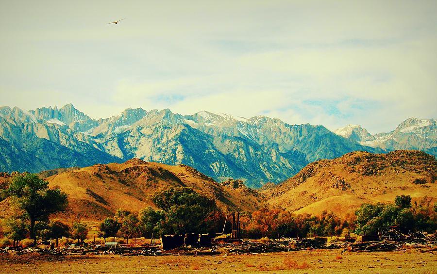 California High Sierras 3 by Max DeBeeson