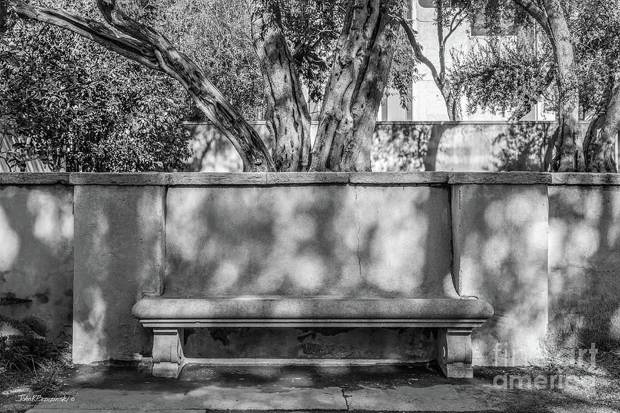 Cal Tech Photograph - California Institute Of Technology Bench by University Icons