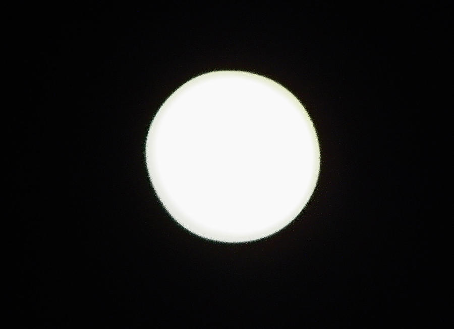 Moon Photograph - California Moon by Elizabeth Hoskinson