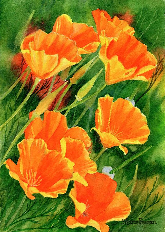 California Poppies Faces Up Painting by Sharon Freeman