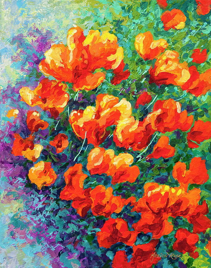 Iris Painting - California Poppies by Marion Rose