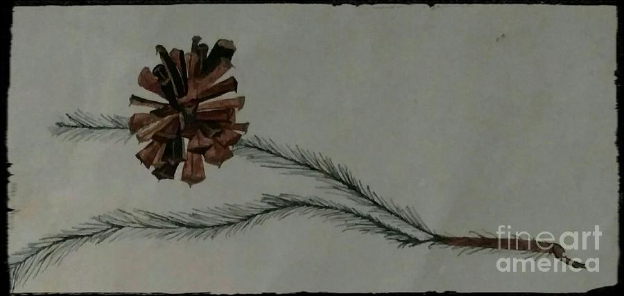 Caligarphy Pine Cone Drawing by Kirk Wieland