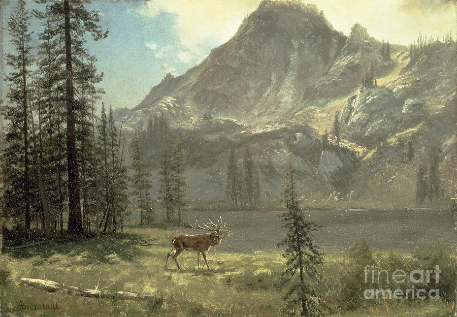 Bierstadt Painting - Call Of The Wild by Albert Bierstadt