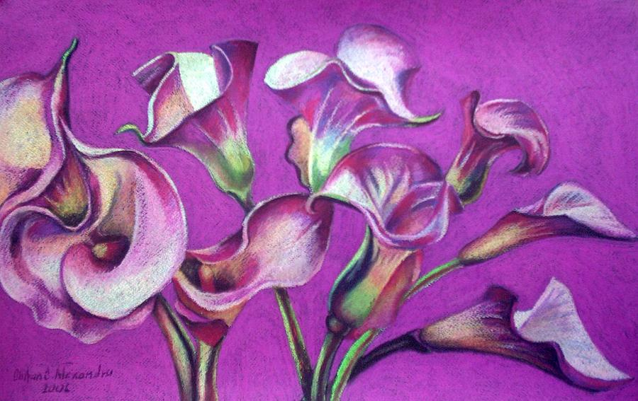 Calla Flowers Painting by Chifan Catalin  Alexandru
