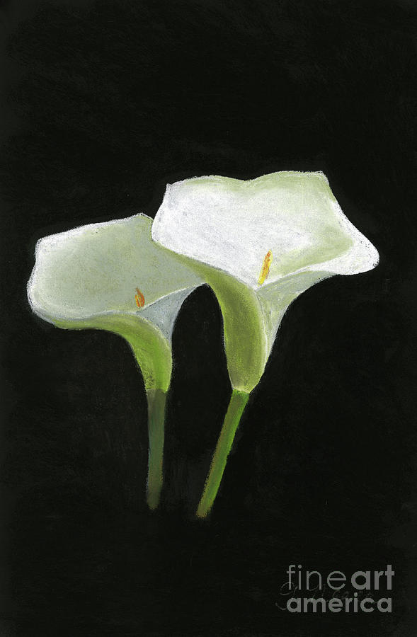 Calla Lily Couple by Ginny Neece