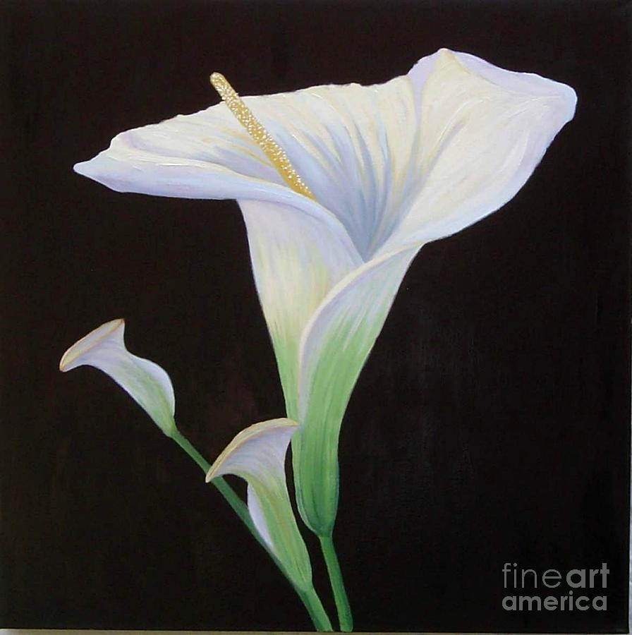 Calla Lily Painting - Calla Lily X by Mary Erbert