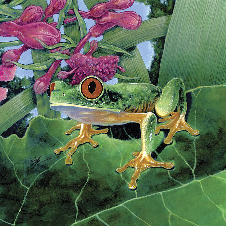 Tree Frog Painting - Calli by Durwood Coffey