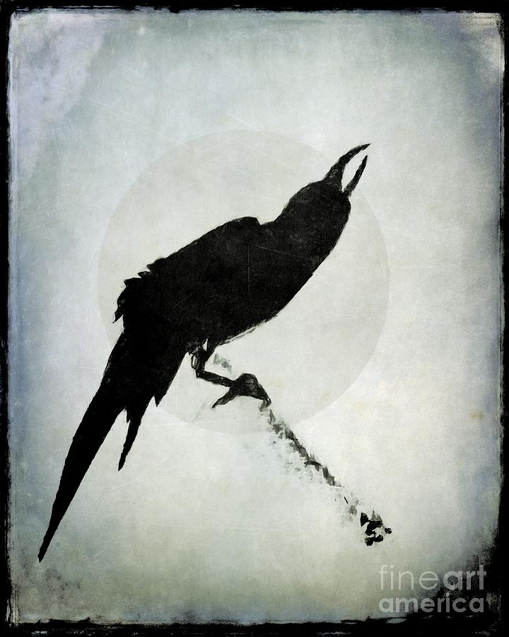 Crow Mixed Media - Calling To The Moon by Patricia Strand