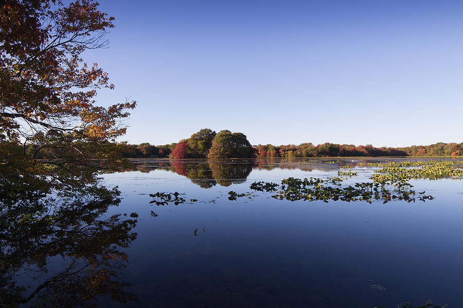 Landscape Photograph - Calm On The Pond by Steve Booke