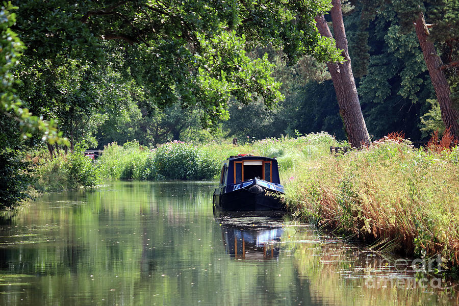 Calm on the Wey Canal  by Julia Gavin