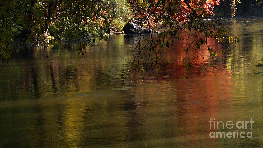 River Photograph - Calm Reflection by Linda Shafer