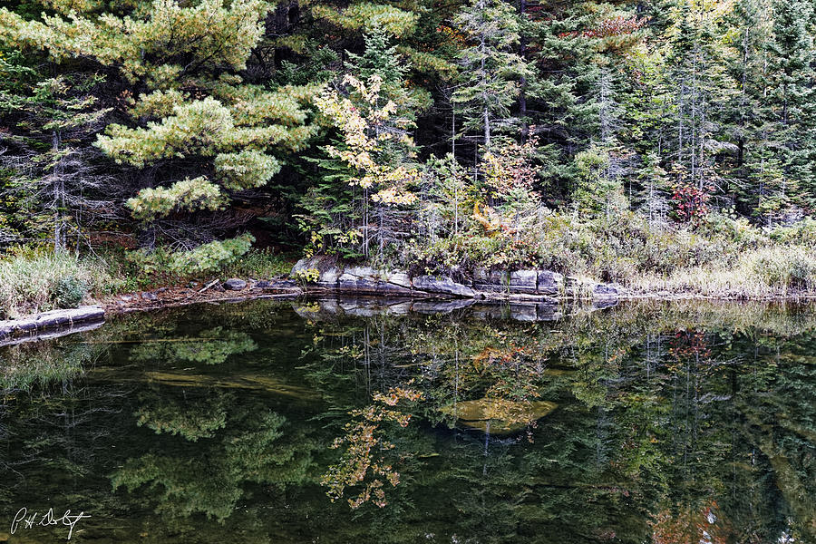 Algonquin Provincial Park Photograph - Calm Water by Phill Doherty