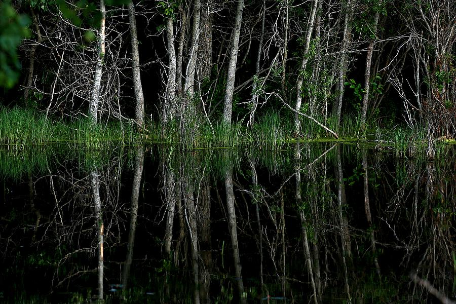 Calm Photograph - Calm Waters by Harley J  Winborn