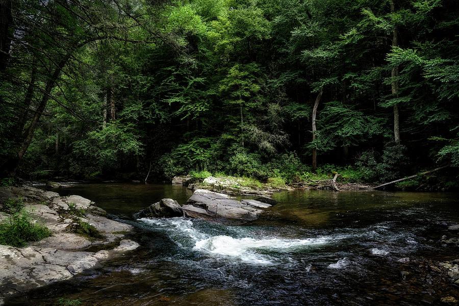 Calming Rapids by Dianna Lynn Walker