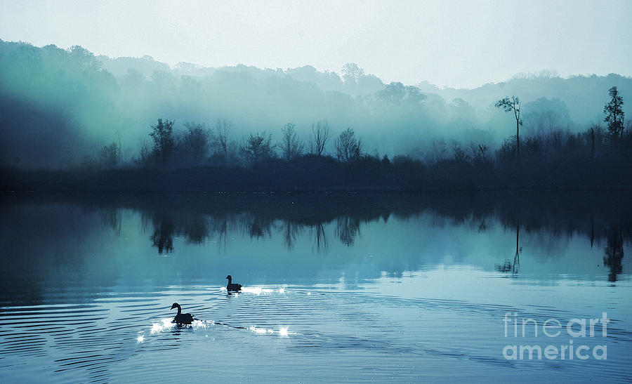 Blue Posters Photograph - Calming Water by Gina Signore
