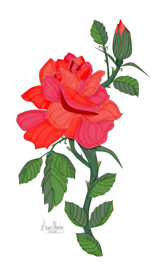 Red Rose Painting - Calypso Rose by Anne Norskog