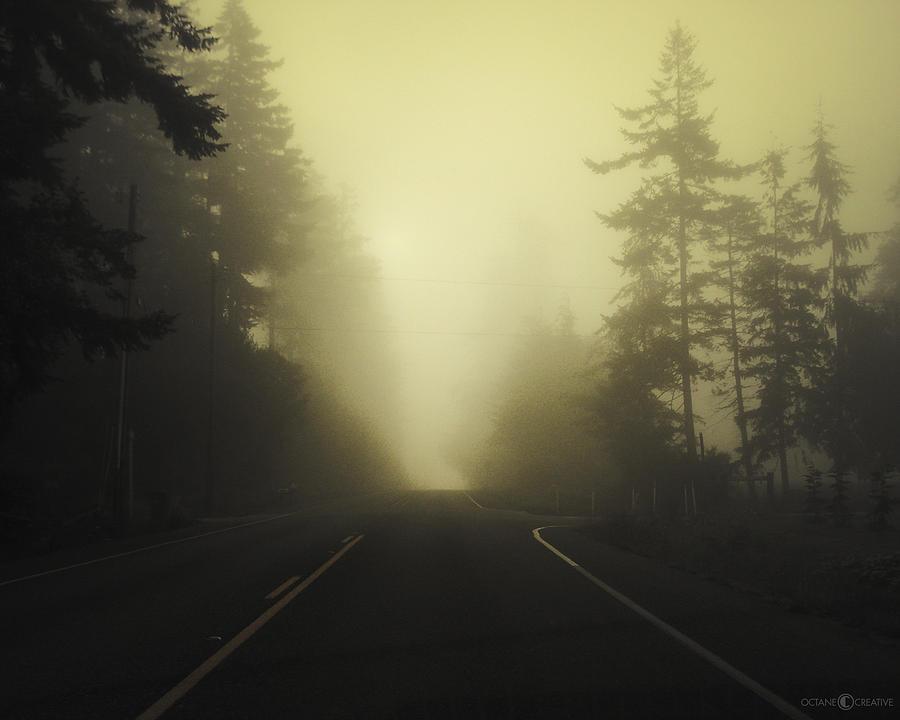 Fog Photograph - Camano Island Fog by Tim Nyberg