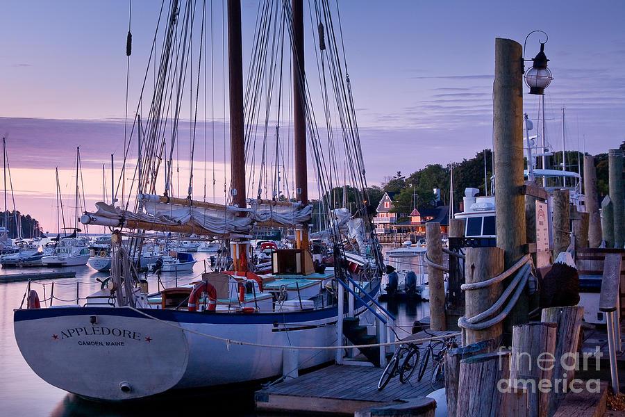 Bay Photograph - Camden Windjammer Dawn by Susan Cole Kelly