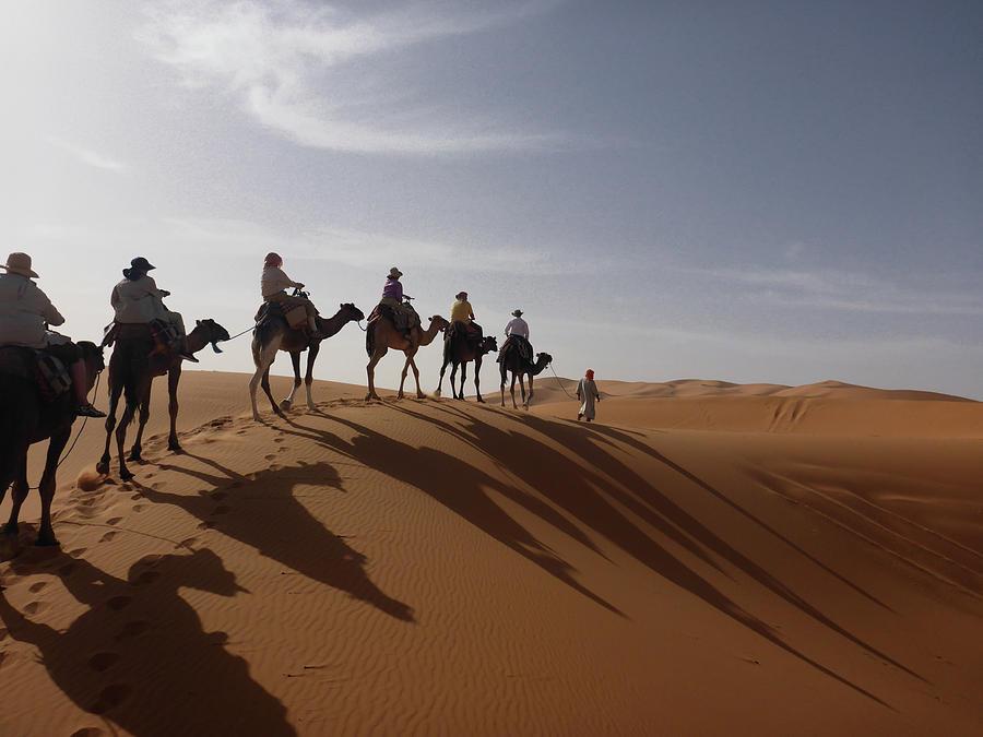Camel Caravan 2 by Rich Isaacman