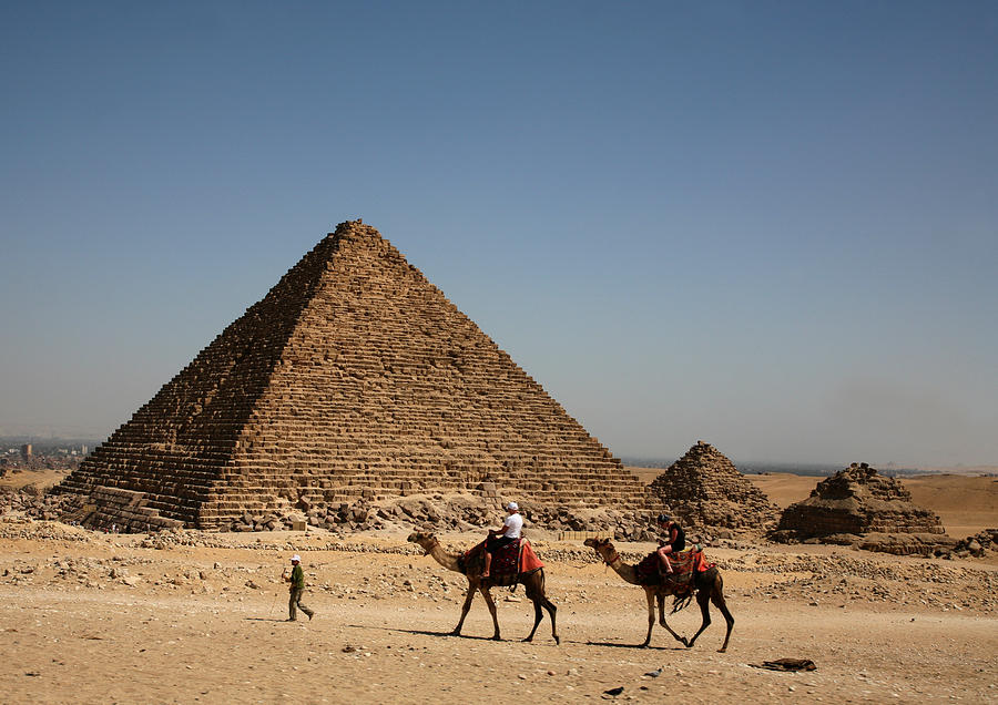 Camels Photograph - Camel Ride At The Pyramids by Donna Corless