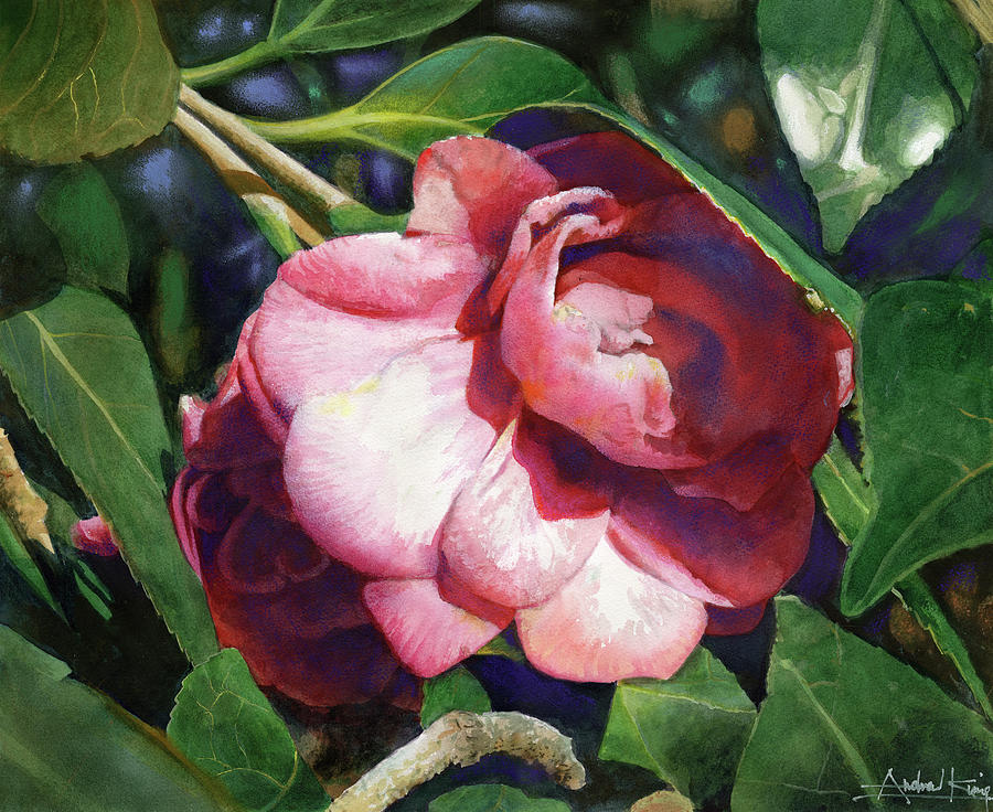 Flowers Painting - Camellianne by Andrew King
