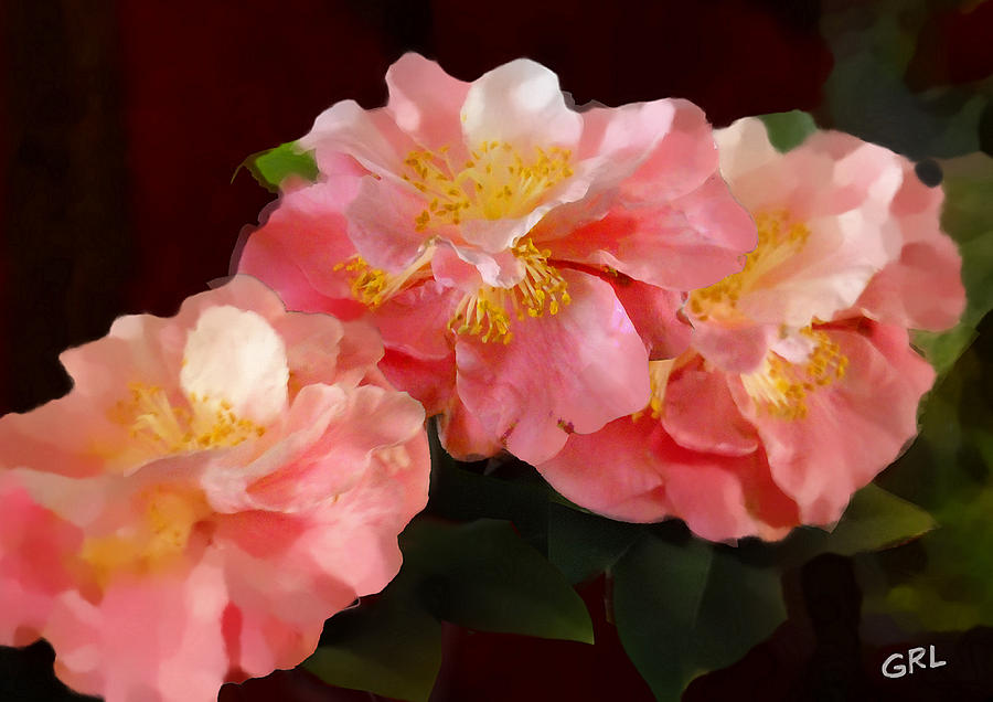 Original Painting - Camellias 1cmods1b Digital Painting Gulf Coast Florida by G Linsenmayer