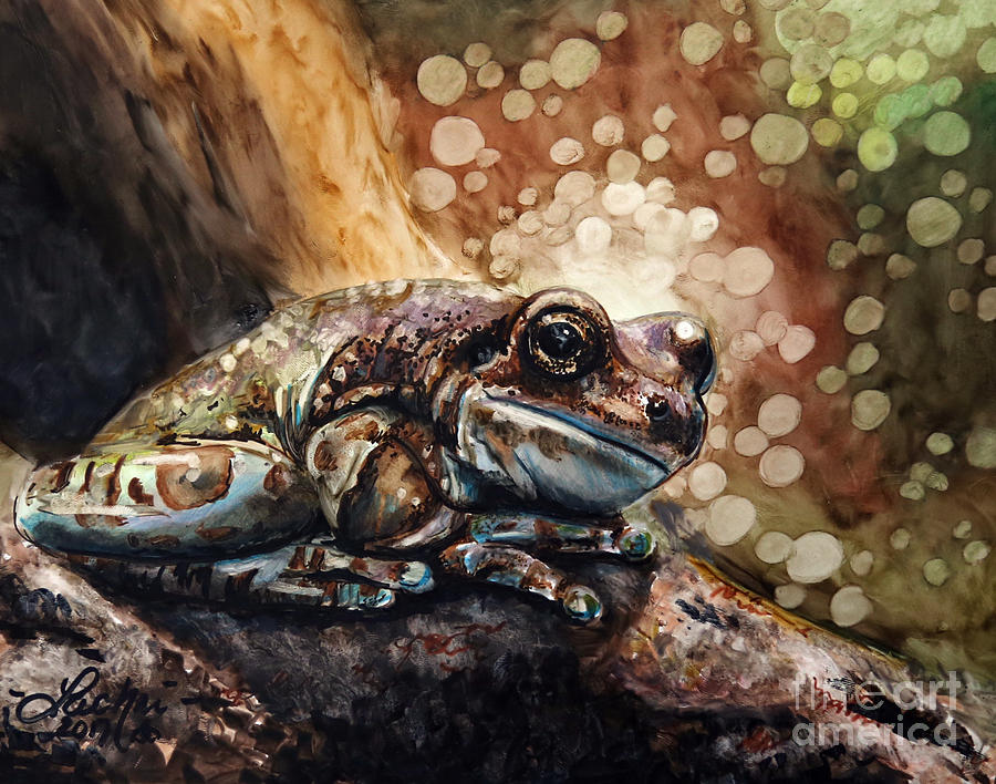 Frog Drawing - Camouflage  by Lachri