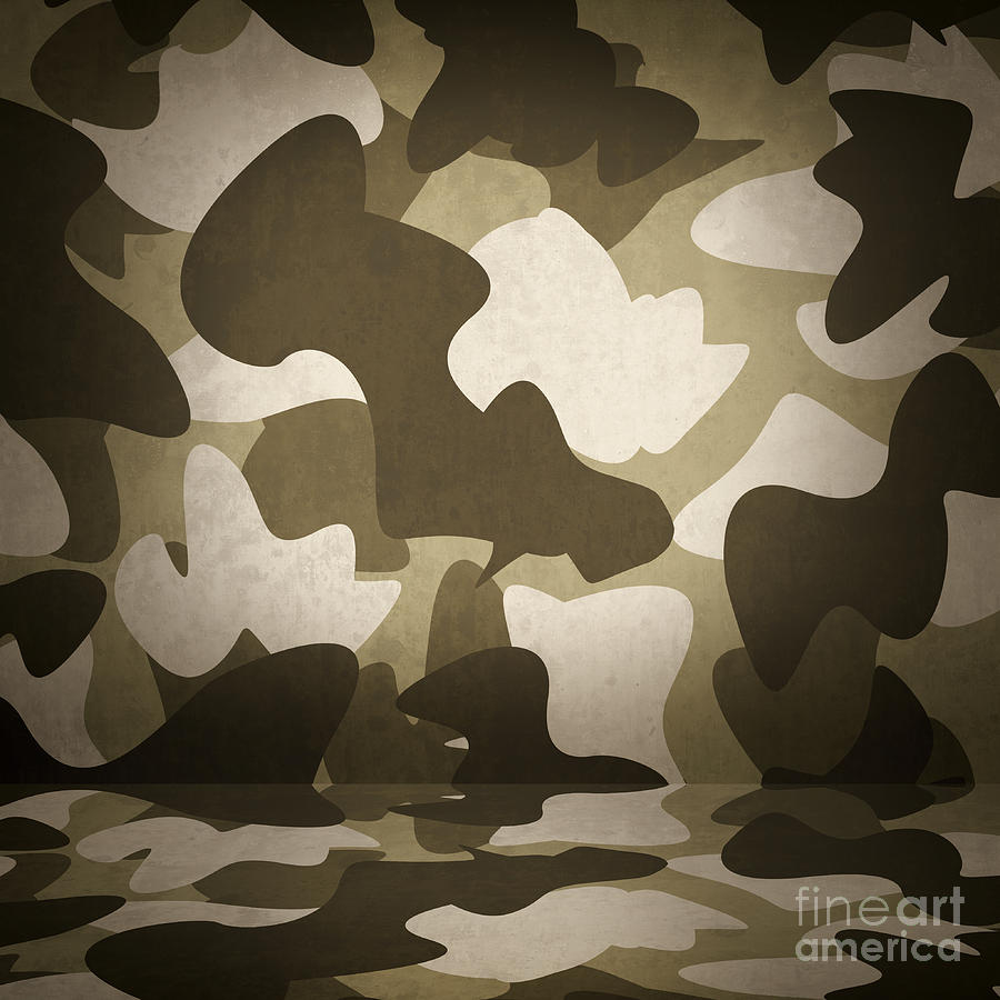 Military Photograph - Camouflage Military Interior Background by Jorgo Photography - Wall Art Gallery & Camouflage Military Interior Background Photograph by Jorgo ...