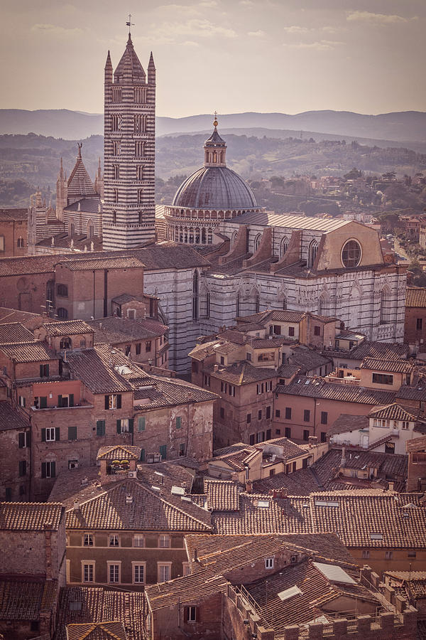 Campanile Photograph - Campanile And Cathedral In Siena Italy Antique Matte by Joan Carroll