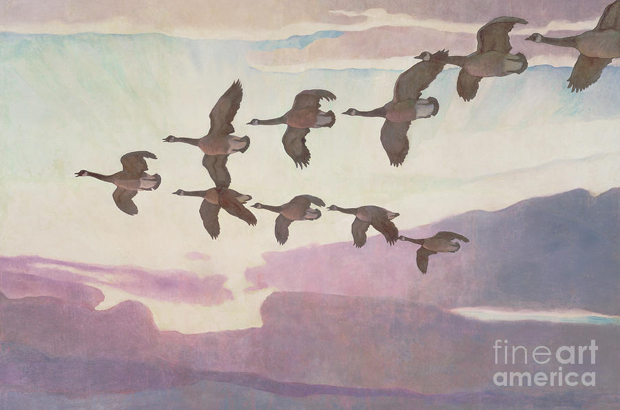Geese Painting - Canada Geese In Spring by Newell Convers Wyeth