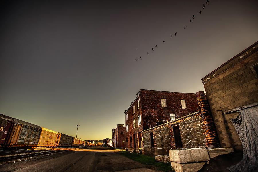 Abandoned Photograph - Canada Geese by Jakub Sisak
