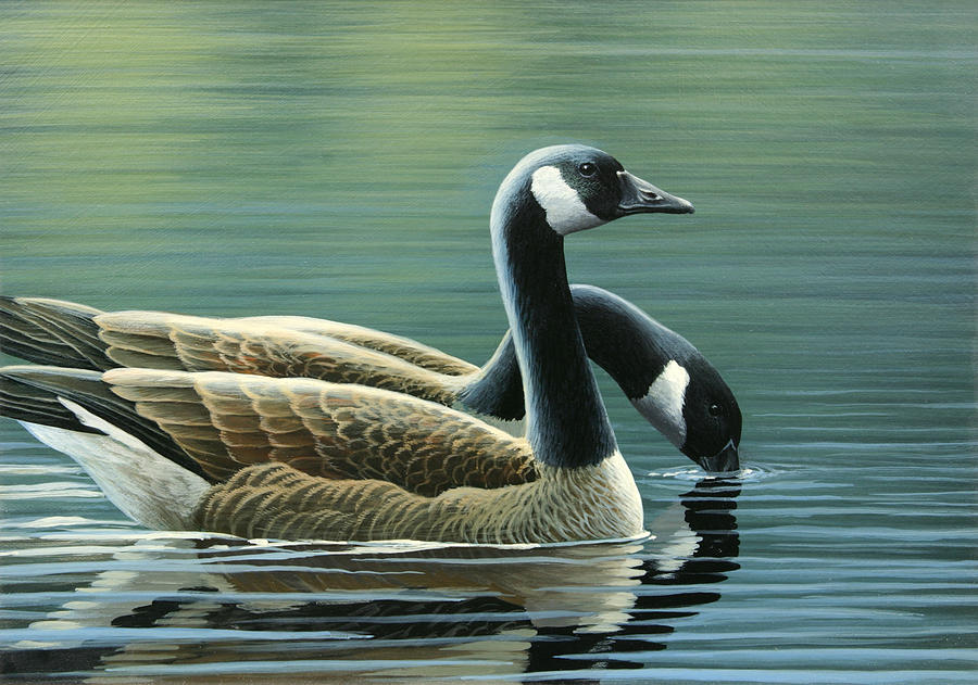 Canada Geese Painting - Canada Geese by Mark Mittlesteadt