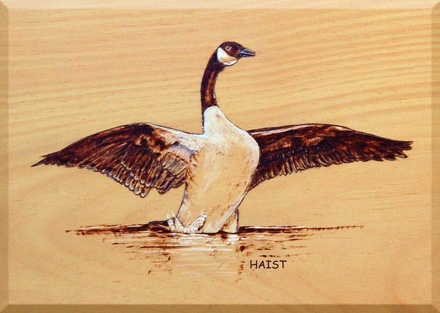 Canada Goose Pyrography by Ron Haist