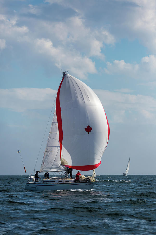 Sailing Photograph - Canada Sail by Linda Ryma