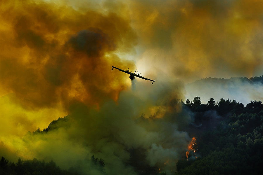 Aviation Photograph - Canadair Aircraft In Action - Fighting For The Salvation Of The Forest. by Antonio Grambone