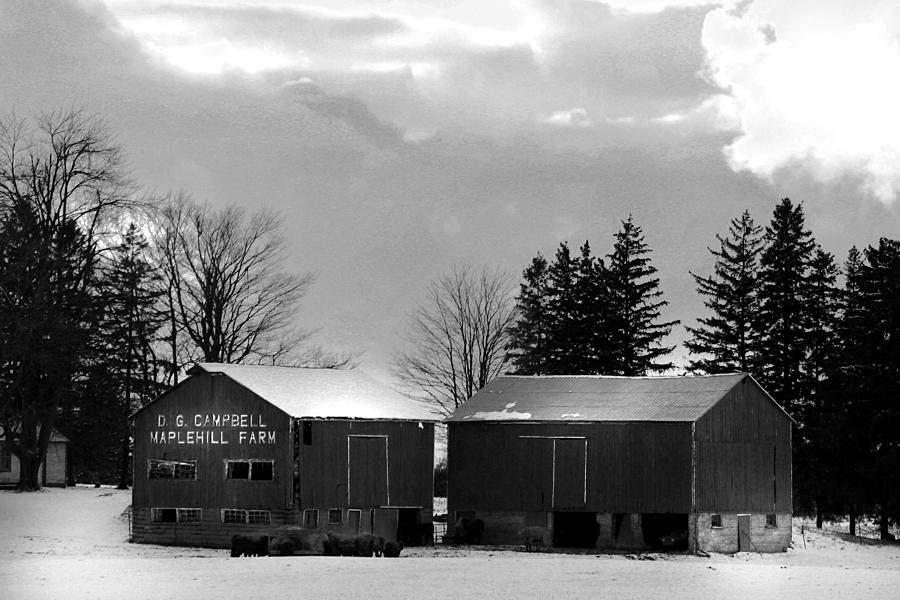 B&w Photograph - Canadian Farm by Anthony Jones