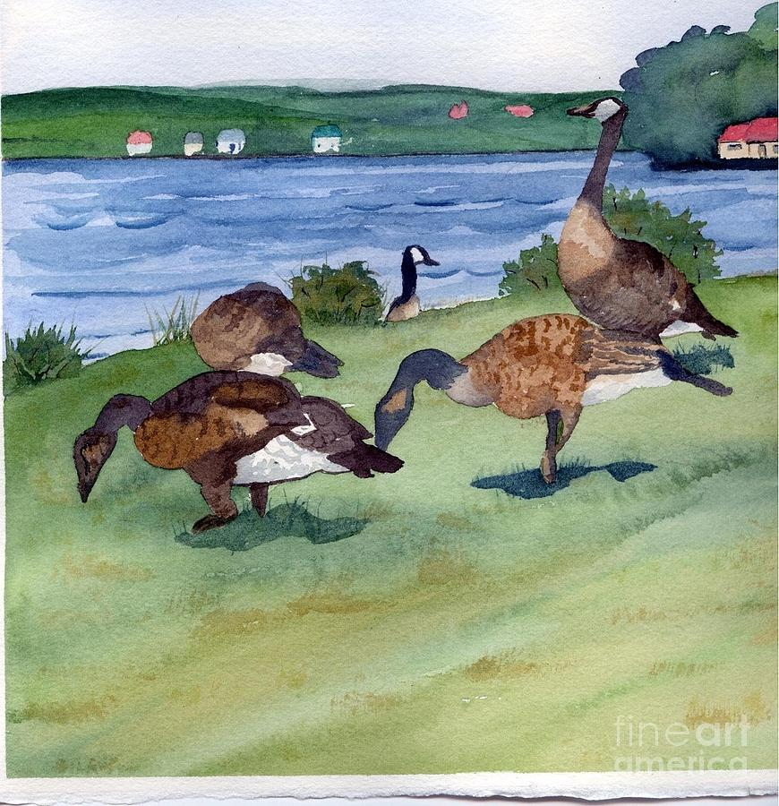 Birds Painting - Canadian Geese S  2 by Gloria Couture