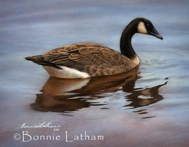 Miniature Painting - Canadian Goose by Bonnie Latham