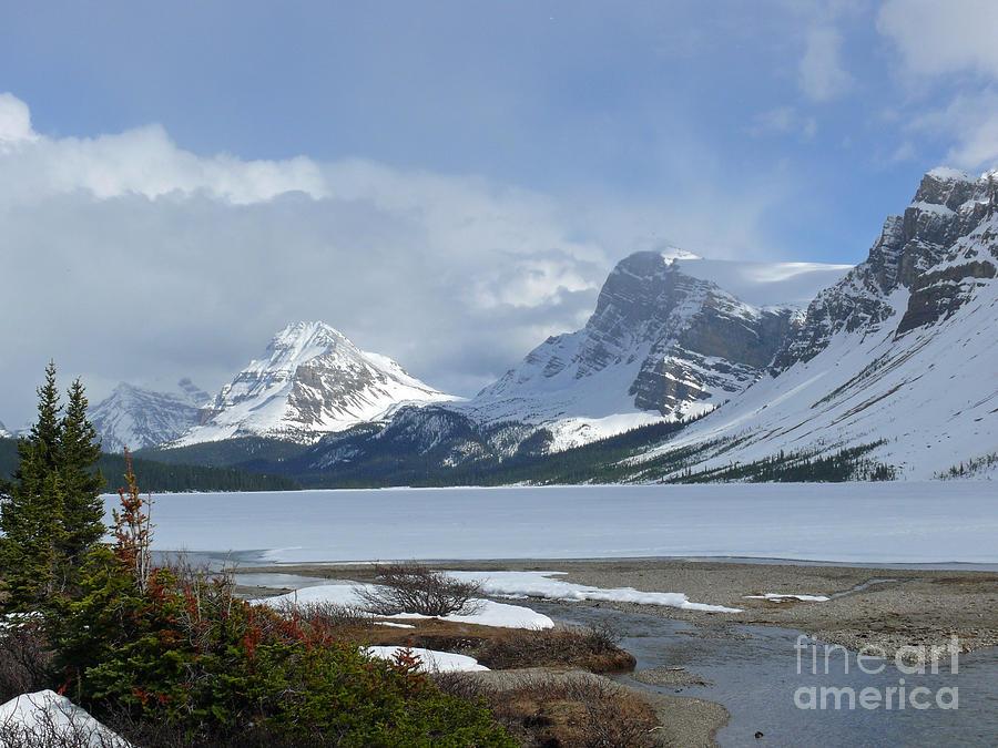 Canadian Rockies Photograph - Canadian Rockies Bow Lake by Mark Grayden