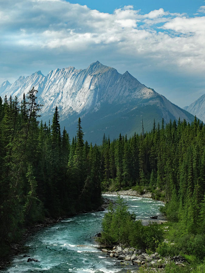 Travel Photograph - Canadian Rockies Riverscape by David T Wilkinson