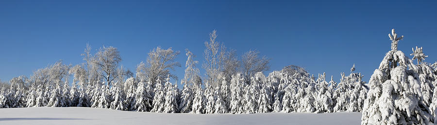 Canada Photograph - Canadian Winter Panorama Foster Quebec by David Chapman