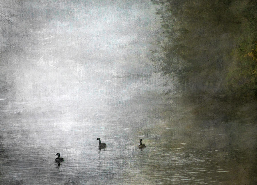 Canadians in the Mist by Paul Bartell