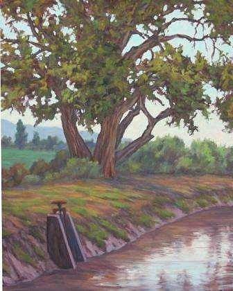 Trees Painting - Canal Cottonwood by Mark Ploss