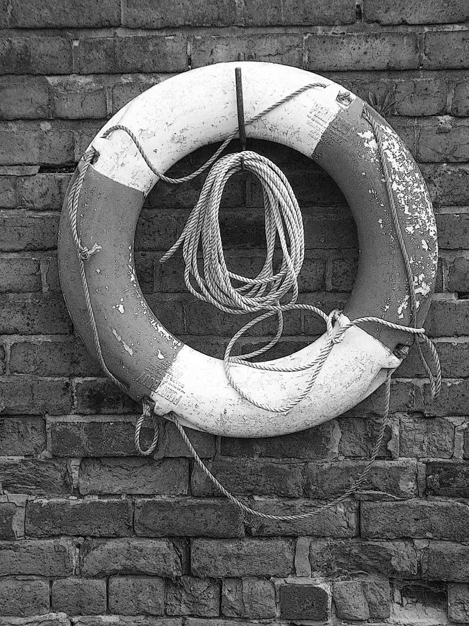 Lifesaver Photograph - Canal Lifesaver by Brainwave Pictures
